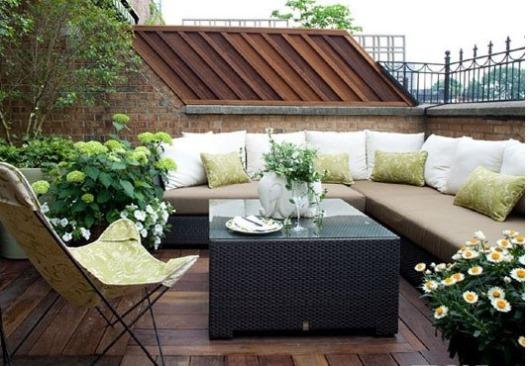 trồng cây trên sân thượng
