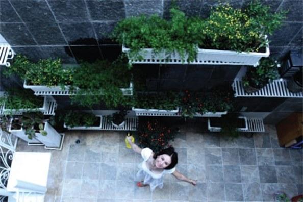choáng với vườn rau sạch của sao việt