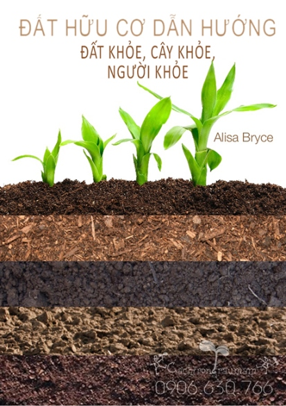 cách xử lý đất sạch sau khi trồng rau