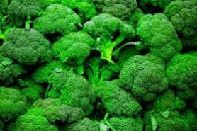 trồng xúp lơ xanh tại nhà ngăn ngừa hen xuyền