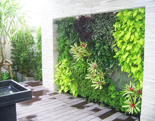 thiết kế vườn trên tường cho không gian chật