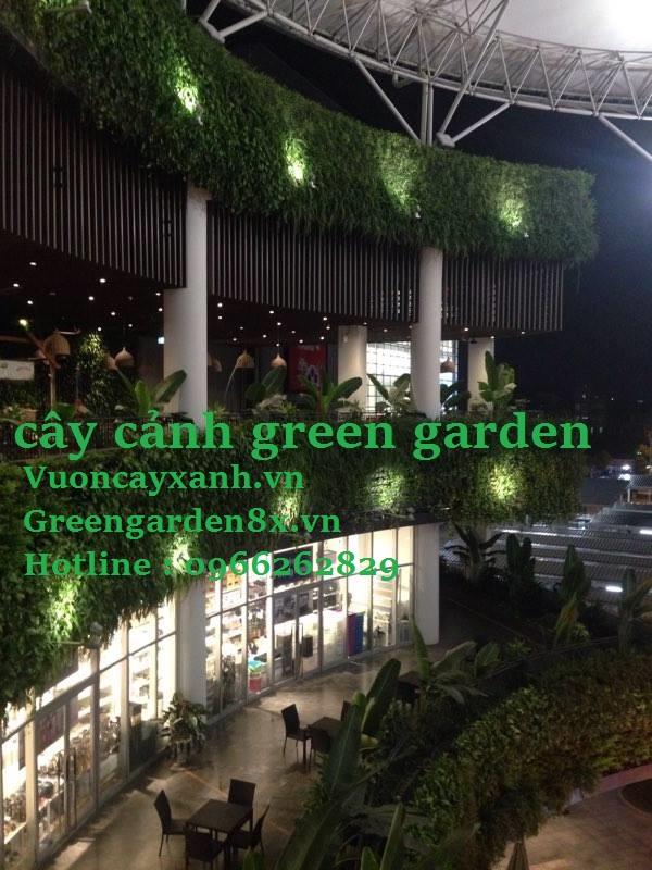 Thi công vườn thẳng đứng giá rẻ