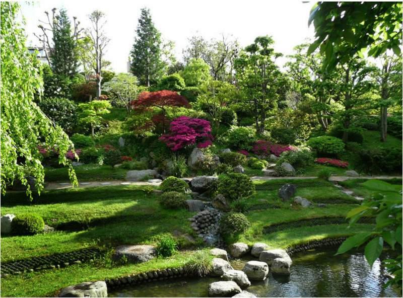 Thiết kế thi công cảnh quoan sân vườn chuyên nghiệp
