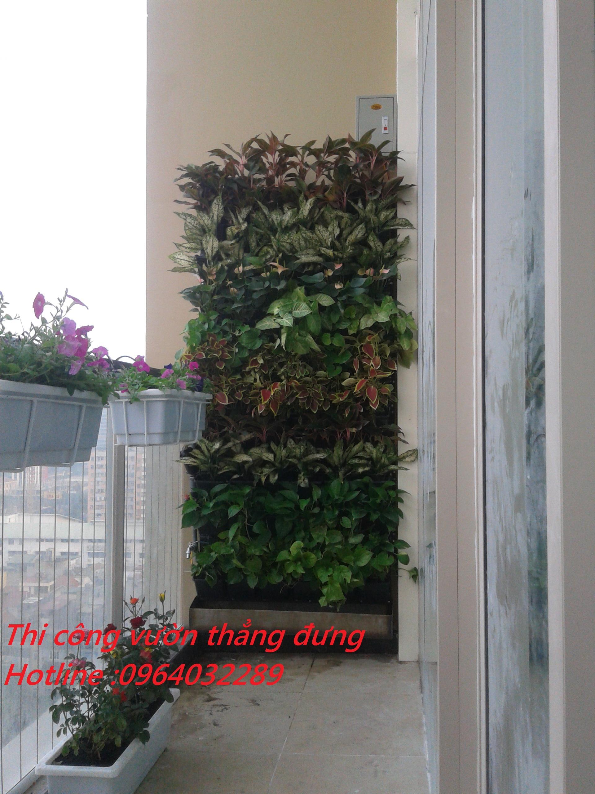 thi công vườn đứng chuyên nghiệp