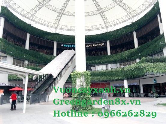 Thi công vườn thẳng đứng hotline 0966262829