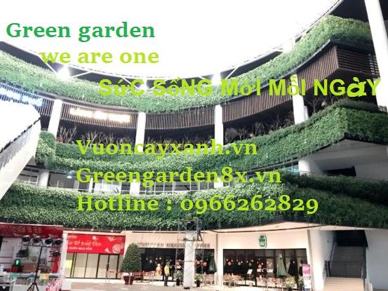 thiết kế vườn thẳng đứng