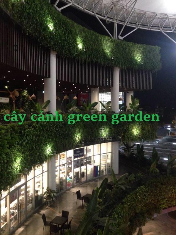 vườn thẳng đứng là gì