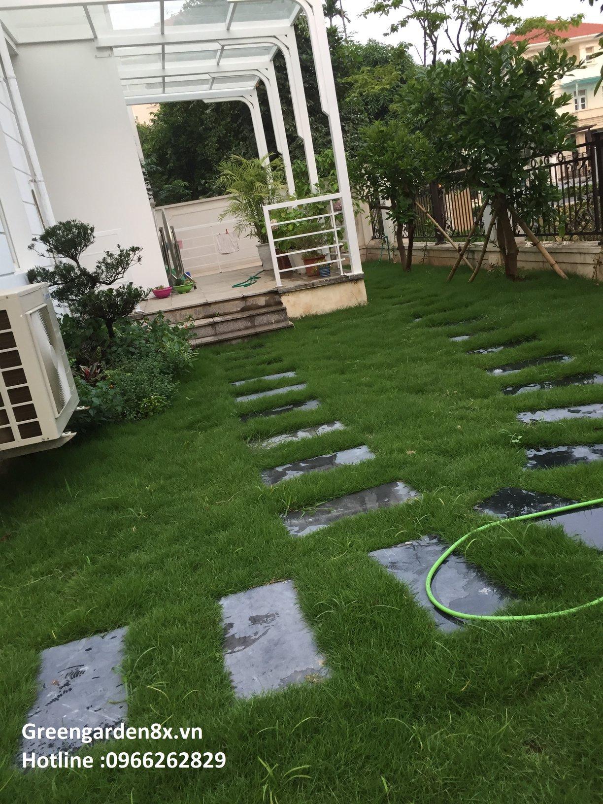hợp đồng chăm sóc sân vườn