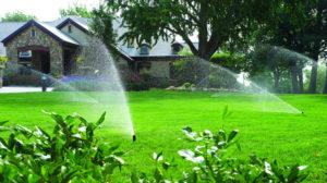 Tưới nước cho sân vườn
