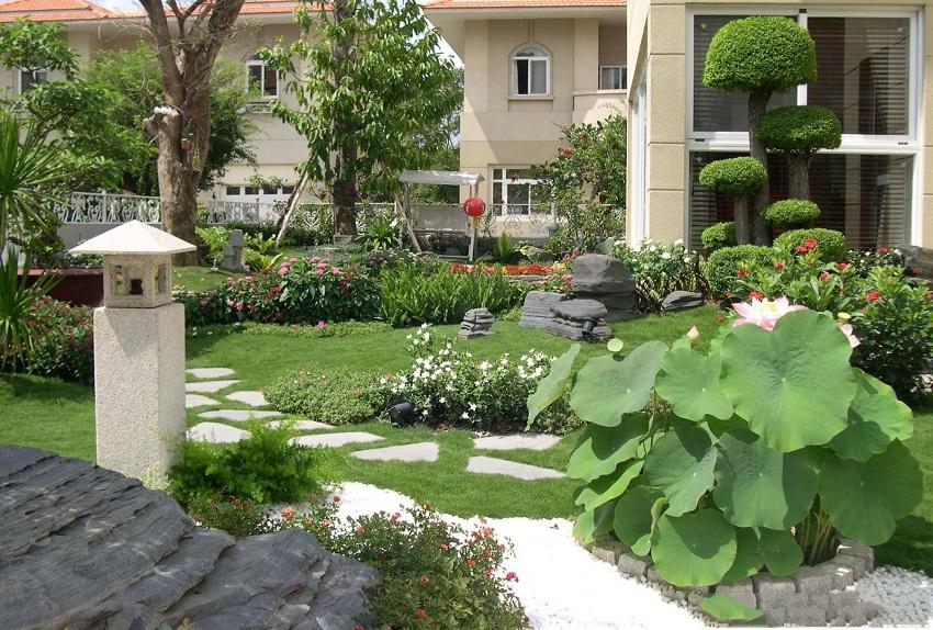 chăm sóc cây cảnh sân vườn tươi tốt